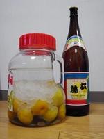梅酒泡盛松藤01.JPG