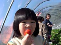03苺となっさん.jpg