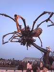 09空飛ぶ巨大蜘蛛.jpg