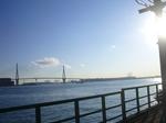 17つばさ橋とベイ橋.jpg