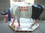 35ガンバレ! 丸の牛 2008-L.jpg