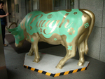 63Holy Cow!-L.jpg