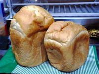 04みえぞーのパン.jpg