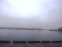 04清水河岸の市おがわビュー.jpg
