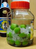 梅酒08瓶詰2011.JPG