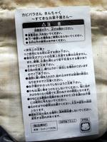 カピバラさんきんちゃく02.jpg