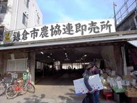05鎌倉市農協連即売所.jpg