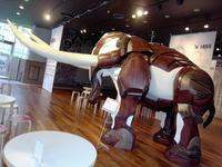 24象の鼻テラスの象.jpg